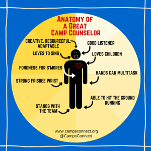 Anatomy of a Camp Counselor